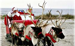Les Renne Du Pere Noel.Les Rennes Du Père Noël